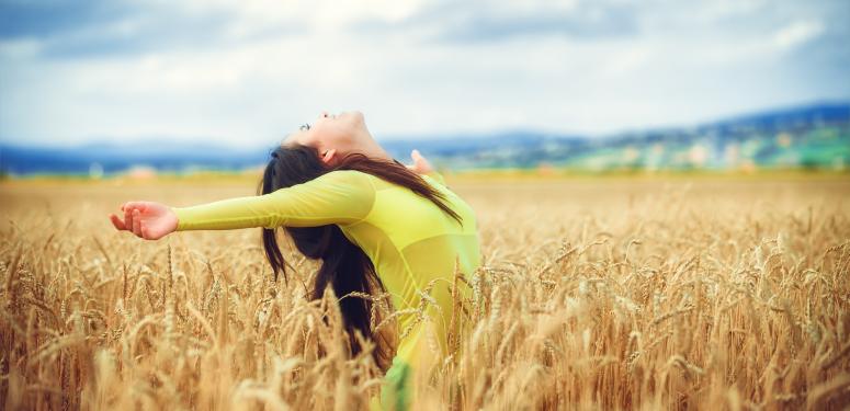 Оливковое масло – твой верный союзник в поисках счастья