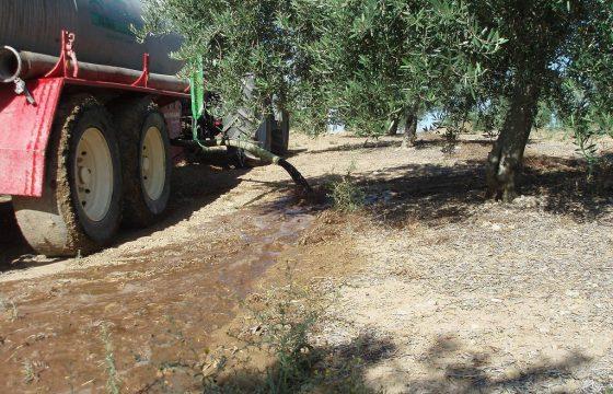 Управление жидкими отходами от маслобойни, применяемое в оливковых хозяйствах